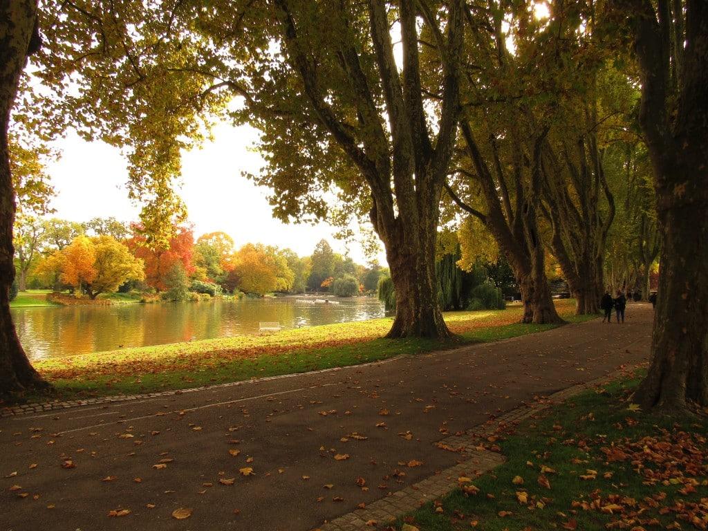 Am Stadtgartensee